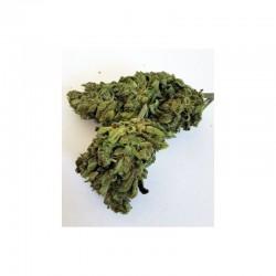 CBD Květy Pope Kush - CBD 4%