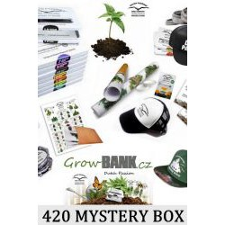 POPULAR AUTO 420 Mystery Box Mary Jane Box Surprise
