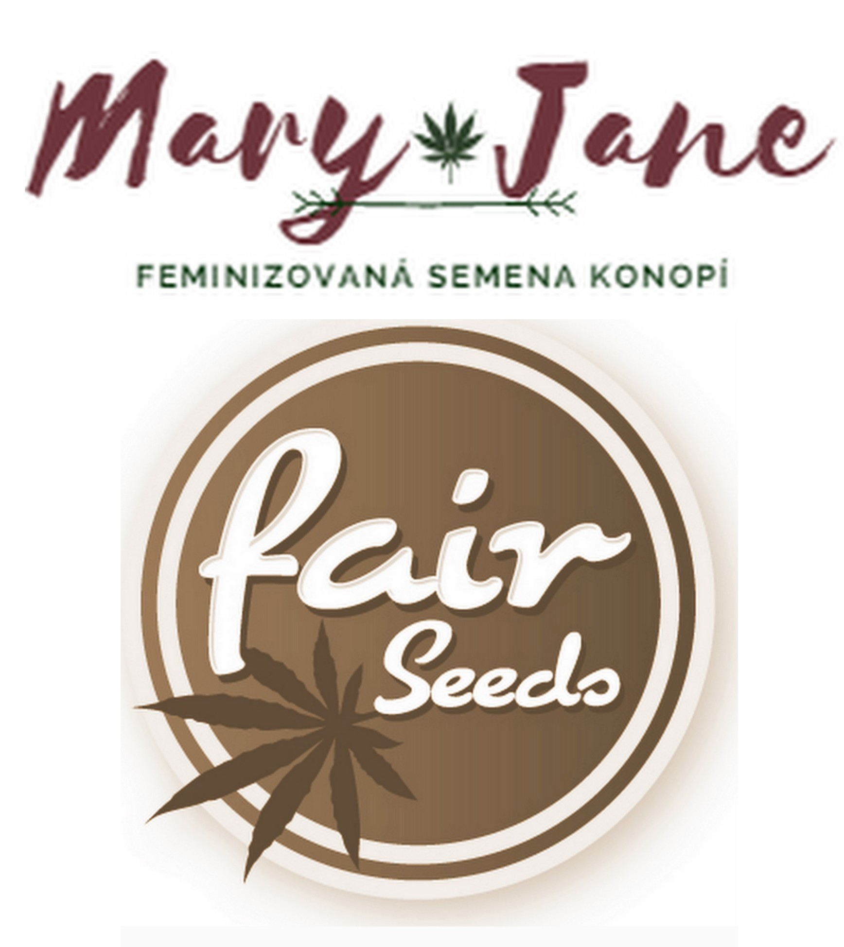 kontakt semena konopí